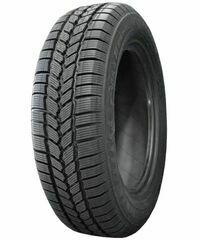 Michelin Agilis 51 SnIce